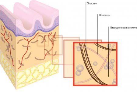 Гиалуроновая кислота для лица: Массаж – это техника, в которой гиалуроновая кислота применяется наружно для кожи, в соединении с эфирными маслами или прочими активными веществами. Это одна из немногих методик, в которой можно использовать гиалуронку самостоятельно в домашних условиях для омоложения лица и шеи. Перед началом процедуры кожа очищается от косметики, обрабатывается обезжиривающими тониками и бальзамами. После Вы можете использовать как готовые средства по уходу за собой на основе…