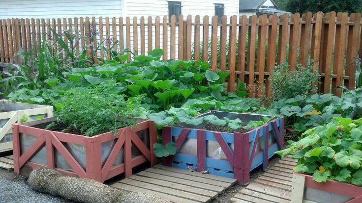turning pallets into raised beds 2