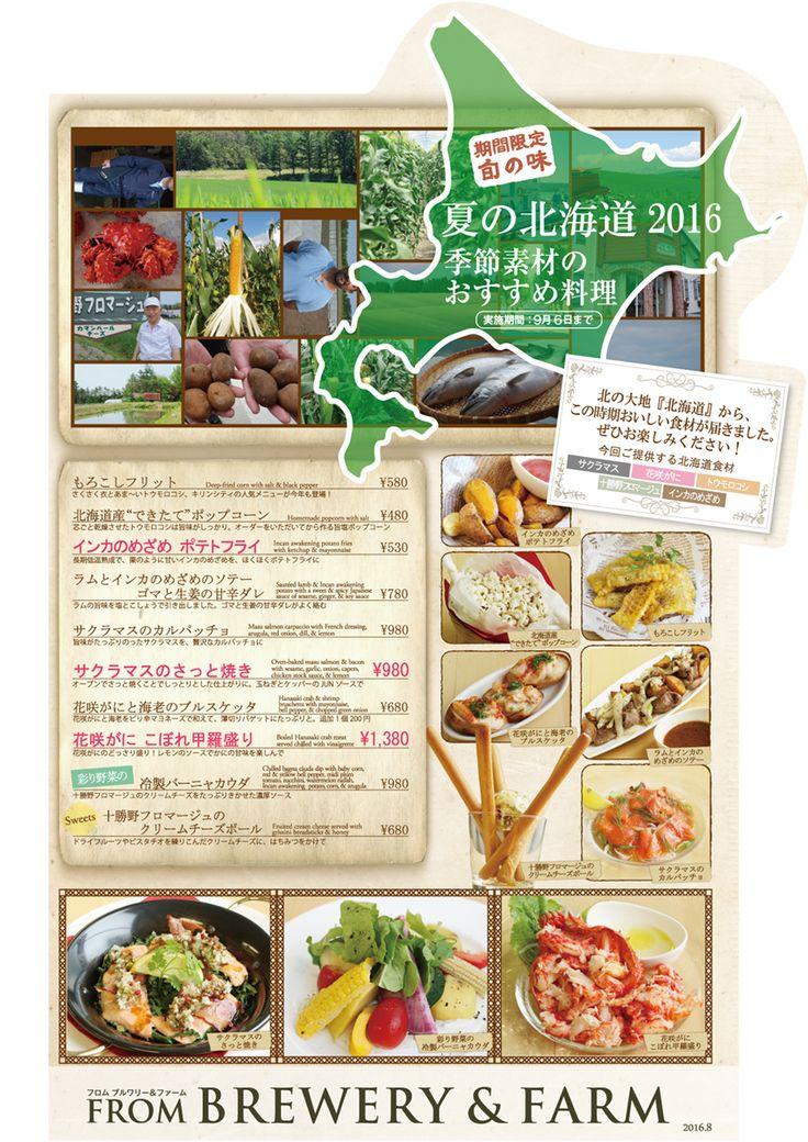8月北海道2016_ol1