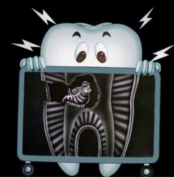 http://budapest-top-dental.eu