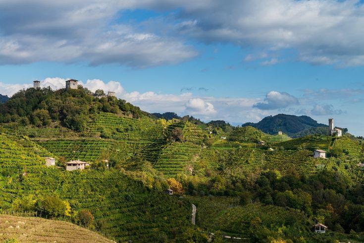 Colline di Farra di Soligo, foto di Arcangelo Piai   La strada del prosecco: itinerario enogastronomico in Veneto su Trivago