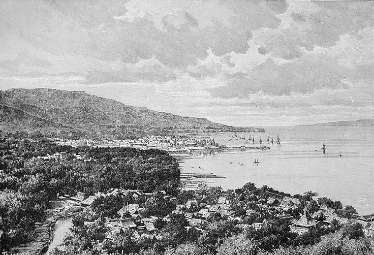 SOUTHERN MOLUCCAS, View of Amboyna, 1870