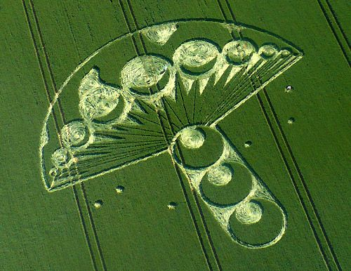 Crop circles   Amazing new crop circle message for June 25th 2009