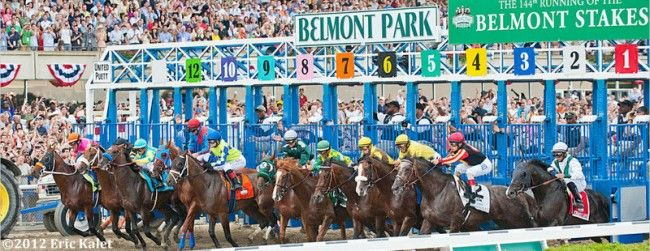 NYRA Releases 2015 Belmont Spring Stakes Schedule | Paulick Report – Thoroughbred Horse Racing News