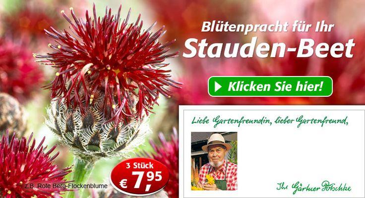 Gartenversand & Pflanzenversand Gärtner Pötschke – hier Gartenbedarf & Pflanzen online bestellen!