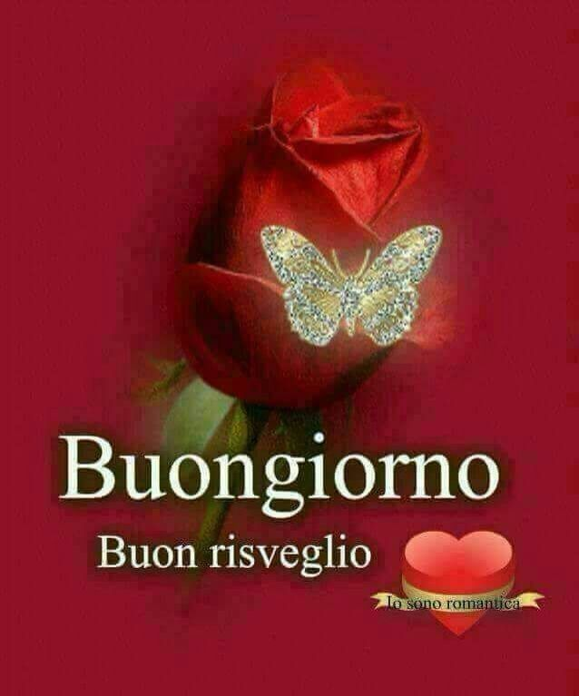 Good Morning Amore Mio : Best images about buongiorno on pinterest good day