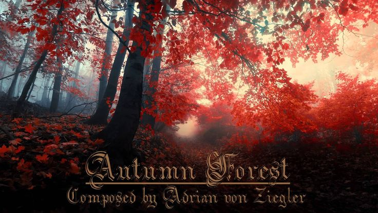 Relaxing Celtic Music - Autumn Forest by Adrian Von Ziegler - New Age Celtic Music...Let the Spirit of the Celts help you take flight!!  One of my most Favorite Artists on You Tube & Face Book!