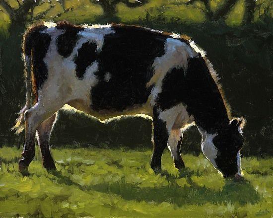 """Holstein Grazing"" Realistic Oils On Canvas By Artist Carol Peek"