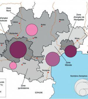 69 600 emplois culturels concentrés autour des métropoles de Toulouse et Montpellier