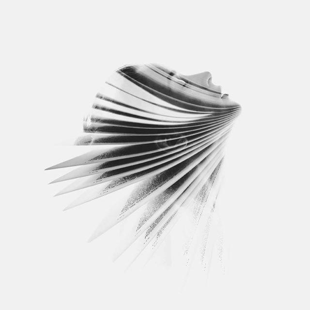 """""""Cuando M visita el camposanto lo hace para desahogarse. Apoya sus manos sobre las letras que singularizan lápida y nicho, y le habla a los huesos, desde la médula de los suyos. De ansiedades, de esperanzas, e incluso de presente. Sobre todo de presente. De un presente que pasa por escribir, por intentar explicarse a ella misma lo que de reprimido y no dicho tuvo la relación con esos huesos a los que rinde homenaje."""" (by ge minúscula) (photo by Aneta Ivanova)"""