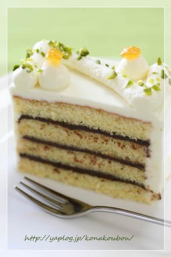 chocolate and cheese cream cake