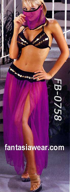 Harem Girls Veils | ... costumes harem girl costumes belly dancers veils i dream of genie