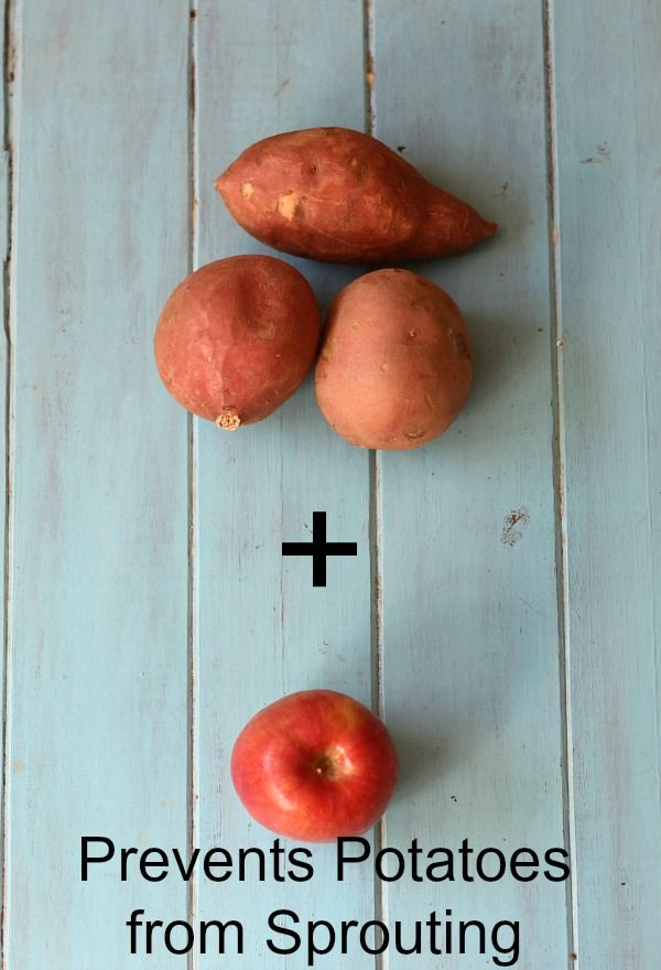 How to prevent potatoes from sprouting  ~ love this! #TheHacksofLife