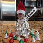 "9 Likes, 5 Comments - Jack The Elf On The Shelf (@jack_the_elf_01) on Instagram: ""Day 11: Jack got stuck in a bottle of water! #elfontheshelf #elfontheshelfideas…"""