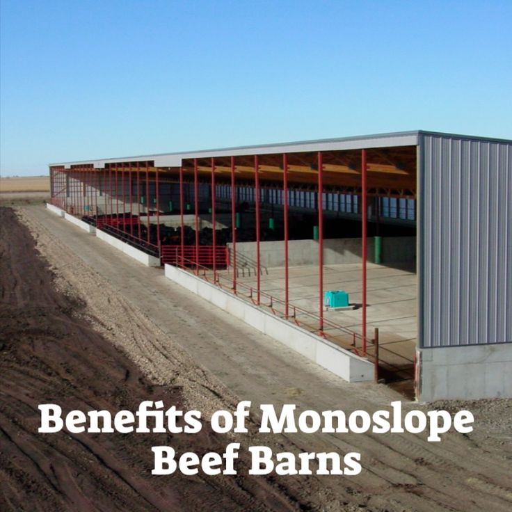 Where S The Beef In A Monoslope Beef Barn Cattle Barn Cattle Barn Designs Pasture Shelter