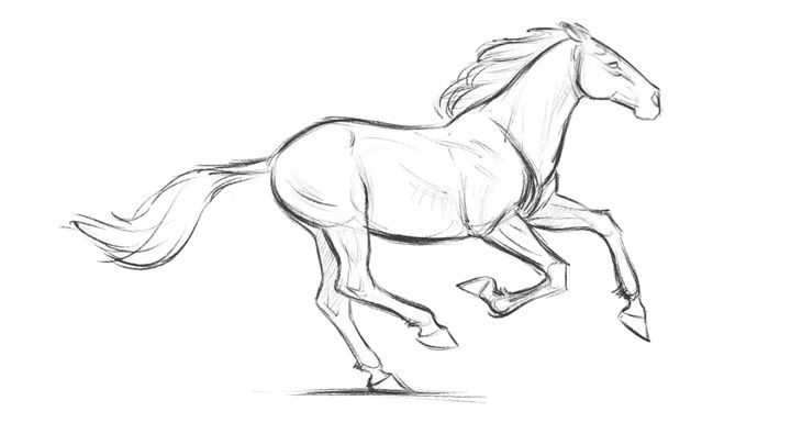 horse running loop animation by Aaron Blaise