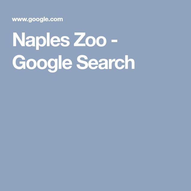 Naples Zoo - Google Search