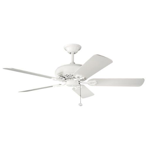 Ceiling Fan From Amazon * Want to know more, click on the image.Note:It is affiliate link to Amazon.