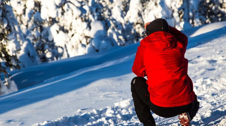 Explore the wilderness - Photography Expedition -Rovaniemi, Lapland, Finland