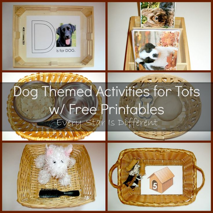 Dog Themed Activities for Tots w/ Free Printables from Every Star Is Different