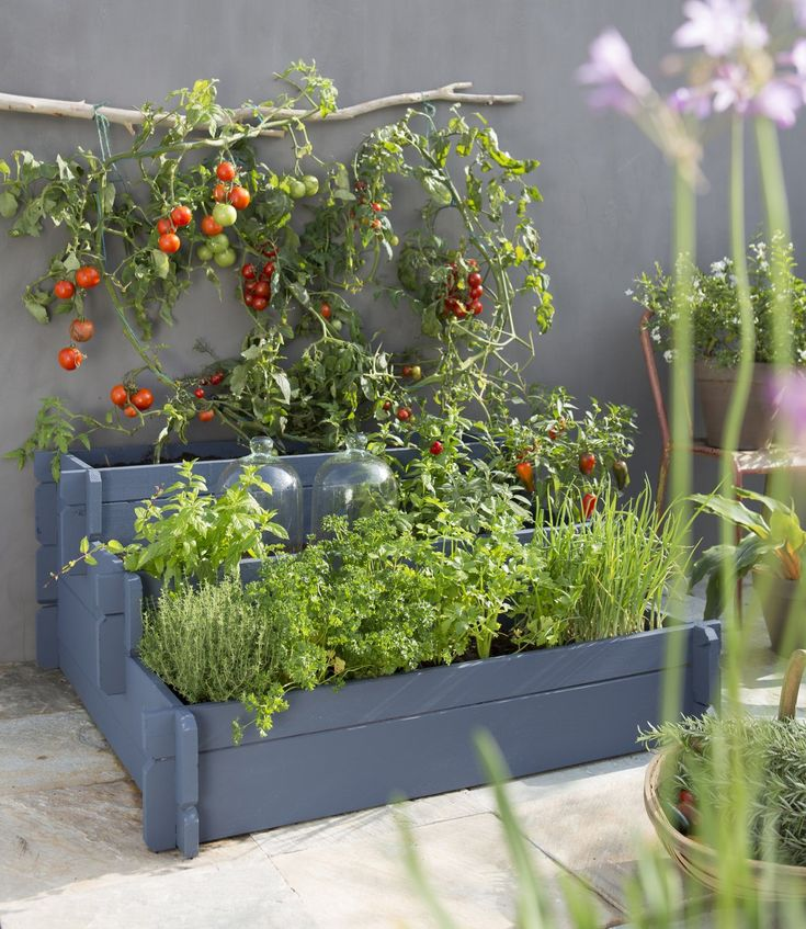 Les 25 meilleures id es de la cat gorie jardins suspendus sur pinterest jar - Potager appartement sans balcon ...
