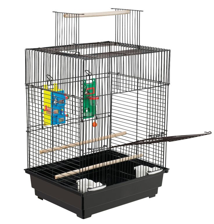 A fun and secure interactive aviary for your feathered friend. Featuring a large front door for easy access to your bird, door also doubles as a landing perch to encourage your bird to explore. Plus, convertible play top pops up for supervised out of aviary playtime.