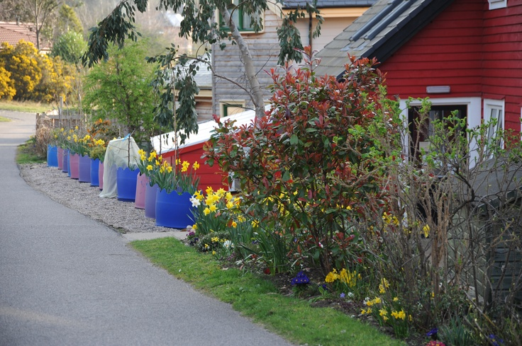 Findhorn in the Spring.....