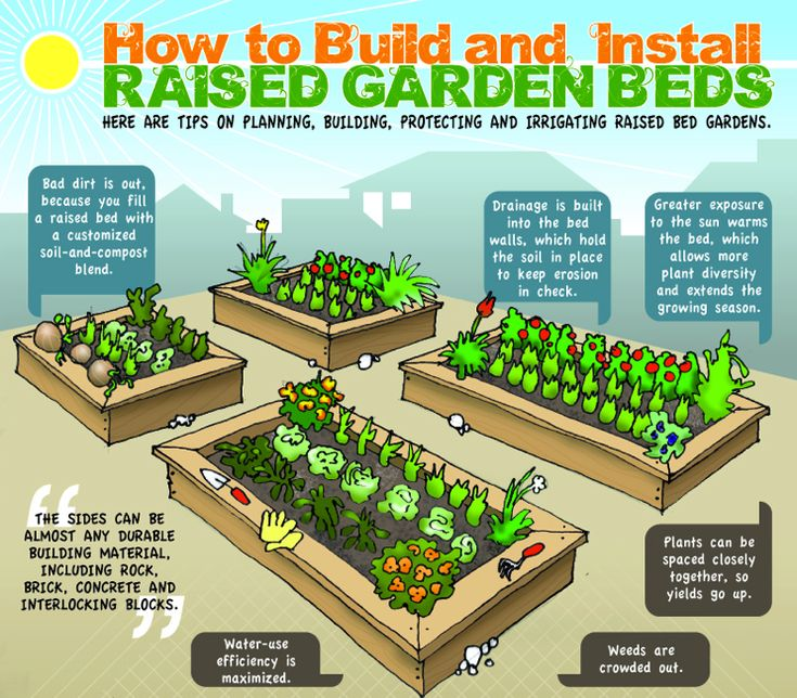 262 Best Gardening In Raised Beds Images On Pinterest And Veggie Gardens