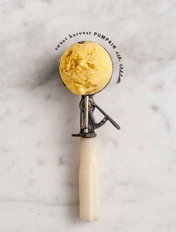 Sweet Harvest Pumpkin Ice Cream - Made with just 4 ingredients, this vegan Pumpkin Black Tea Ice Cream recipe is a healthy take on holiday desserts.