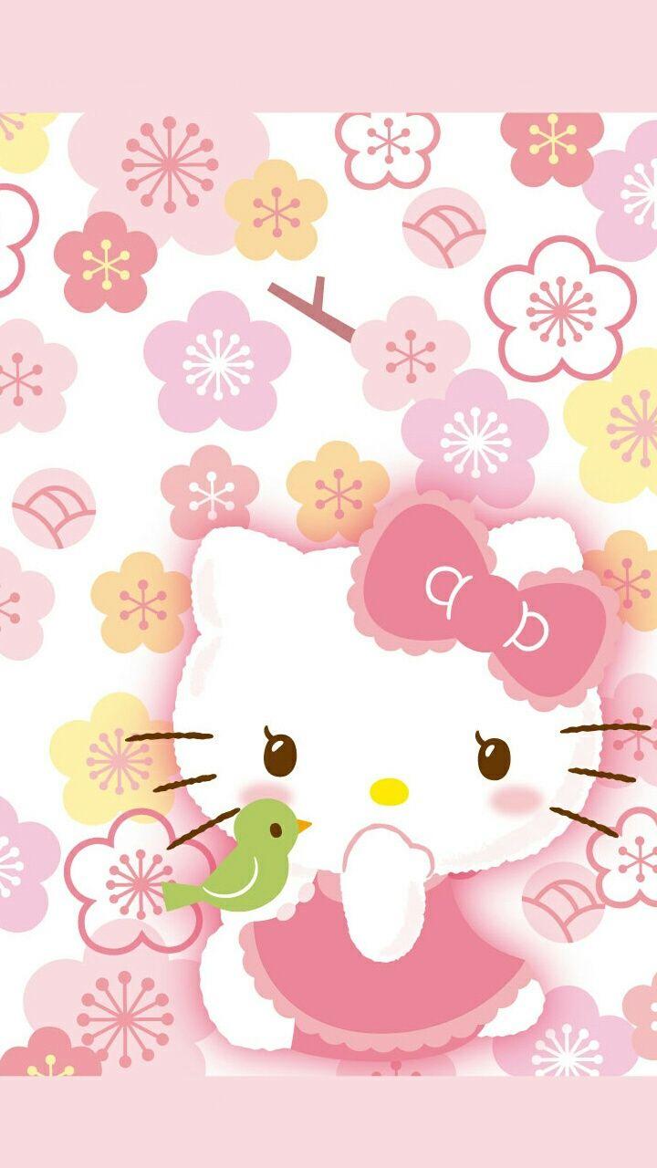 3219 best hello kitty love images on pinterest   hello kitty