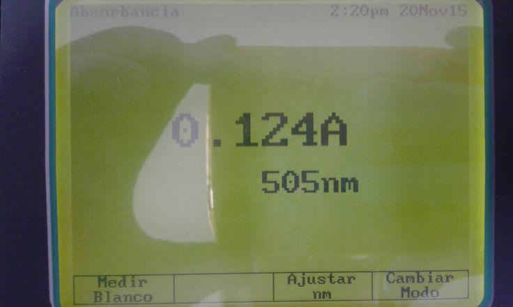13. Abs muestra