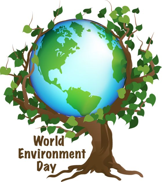 best treehuggers unite for the environment images  environment essay for kids clean up the environment essay 284 words