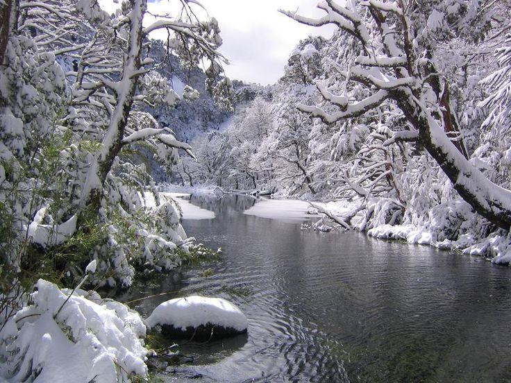 Parque Nacional Huerquehue (Chile's Lake District)