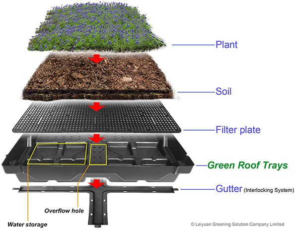 Green Roofs What Is The Working Principle Of Green Roof Trays Green Roof Design Green Roof System Green Roof Garden