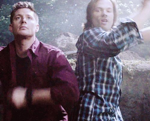"""clairvoyantsam: """" Because we all need these dancing dorks on our dash (=゚ω゚)ノ requested by brotherlykisses """""""