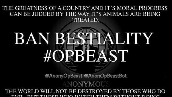 Bestiality porn legal