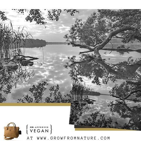 Look! Look! Look deep into nature and you will understand everything.   #cork #vegan #veganideas #ecofriendly #corkproducts #giftideas #veganleather #corkwallets #corkbags #leatherwallets #accessories #madeinportugal #sustainable #lifestyle #vegangirl #ecofashion