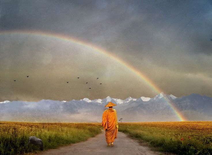 How to Lead a More Conscious Life in Just 7 Days - let's try this in our shelter