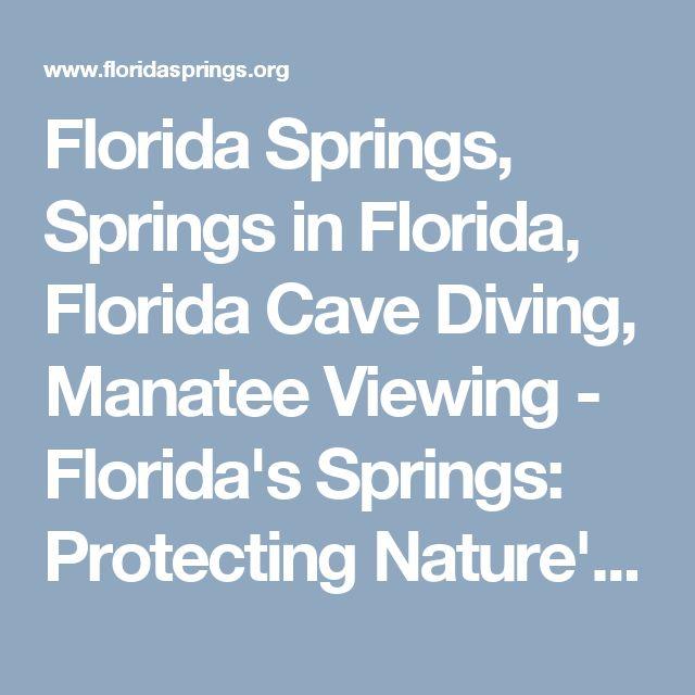 Florida Springs, Springs in Florida, Florida Cave Diving, Manatee Viewing - Florida's Springs: Protecting Nature's Gems - Florida DEP