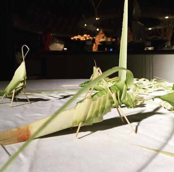 Robinson Club crickets