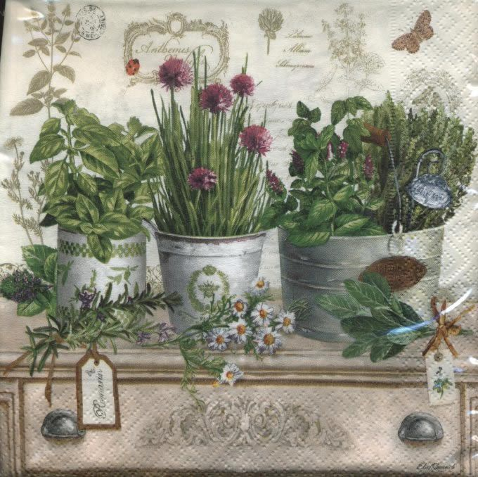 Kitchen Herbarium Art: 228 Best Images About Botanical On Pinterest