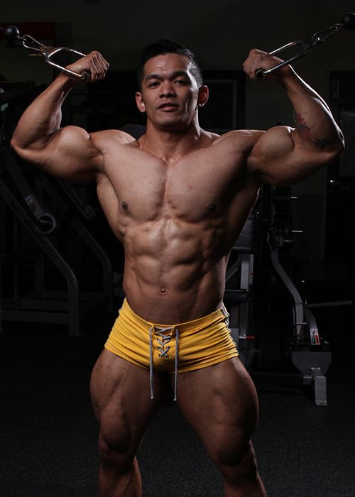 Pity, Video clips of asian bodybuilding workouts