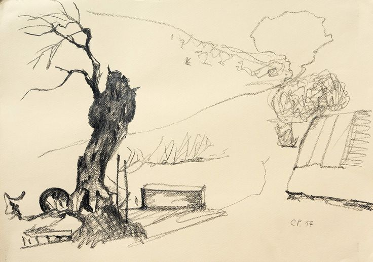 Landscape (An Olive Tree), ppencil on  paper