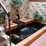 Contoh Bentuk Kolam Ikan Di Rumah Minimalis