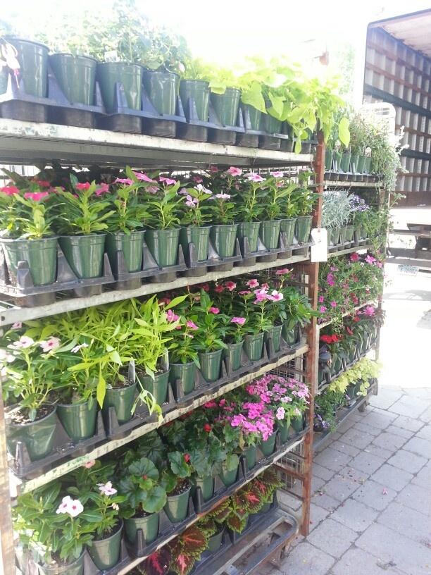 Superb Waynesboro Garden Center And Landscape Be Inspiration Article