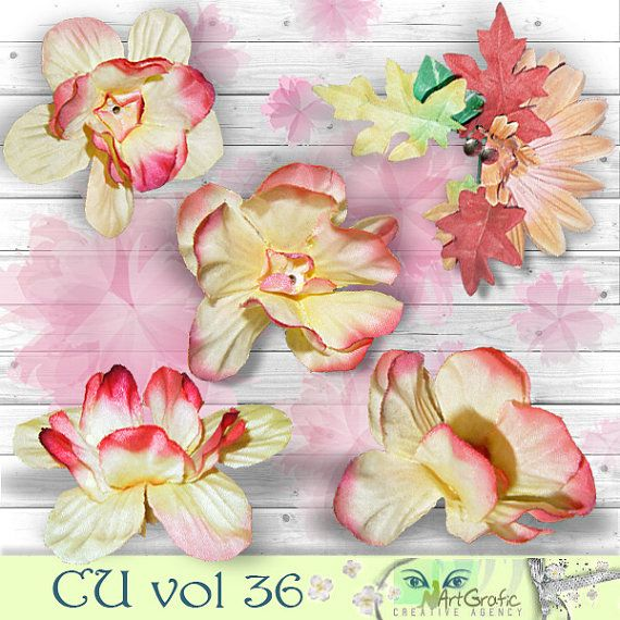 Digital  Elements for  Commercial Use CU vol 36 by ArtGraficStudio