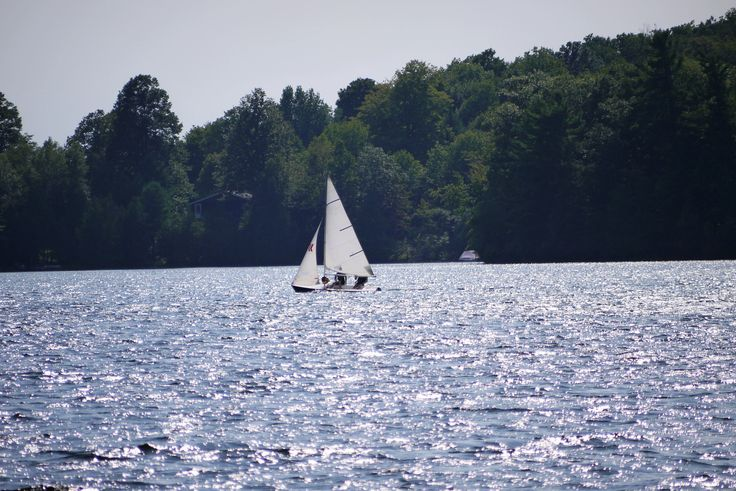 Sailing in Canadian cottage country with bright sunlight, fresh water, and dark forests. longwkd.com