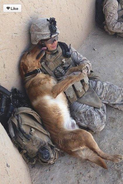 A man's best friend :)