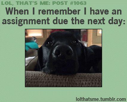 lol thats me post #1063