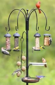 Anyone who has put up a variety of bird feeders is familiar with the mess that can be generated by all the feathered visitors. There are solutions! Read about them here. From: wildbirdscoop.com